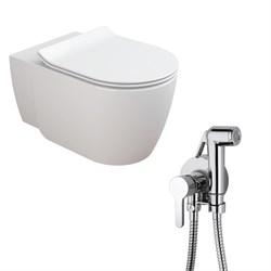 Комплект  3 в 1 N444661aosta: подвесной унитаз  CORAL  с сиденьем  (микролифт) и гигиенический душ AOSTA (PAINI, Италия) - фото 11931